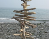 Driftwood and shell mobile