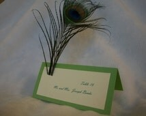 Peacock Feather Escort Cards