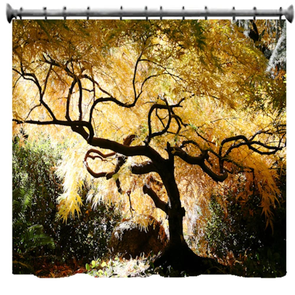 Bonsai Japanese Maple Shower Curtain 69 x 70 by susanakame1