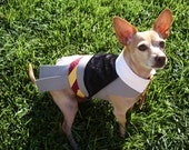 Hermione Granger Harry Potter Dog Costume