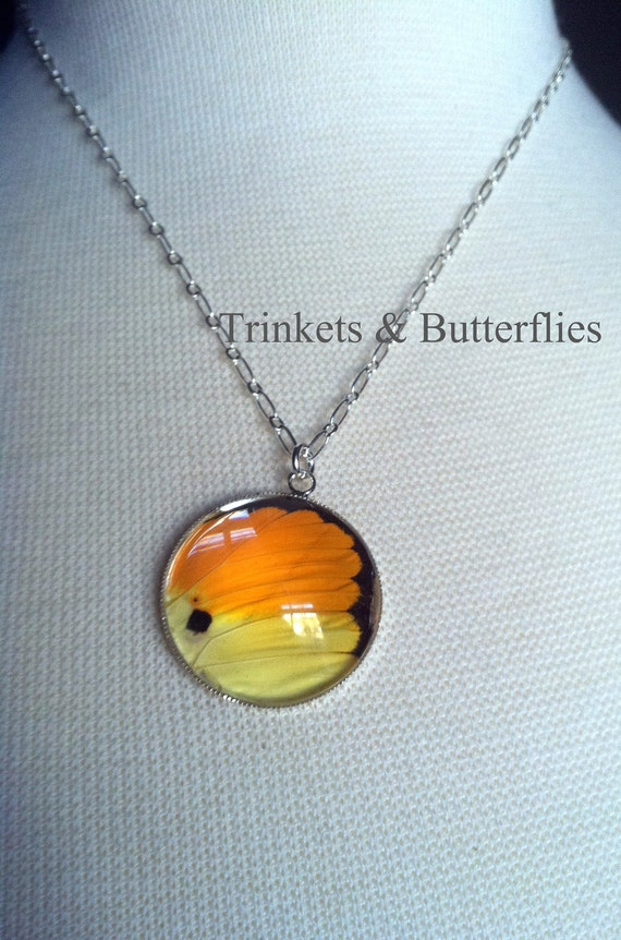REAL butterfly wing necklace orange and yellow butterfly silver round necklace