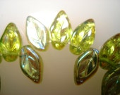 Czech Glass  Clear Olivine Green Leaves with side hole and one aurora borealis side  10x5mm