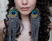 Extra Long & Full Grizzly Peacock Feather Earrings - Handmade Sterling Silver Ear Wires