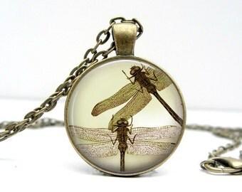 Sepia Dragonflies Necklace : Glass Art Picture Pendant Photo Pendant (1276)