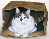 CAT in the Bag, cat, maine coon, cat lover, art PRINT, archival, from original watercolor, animal art, cat art