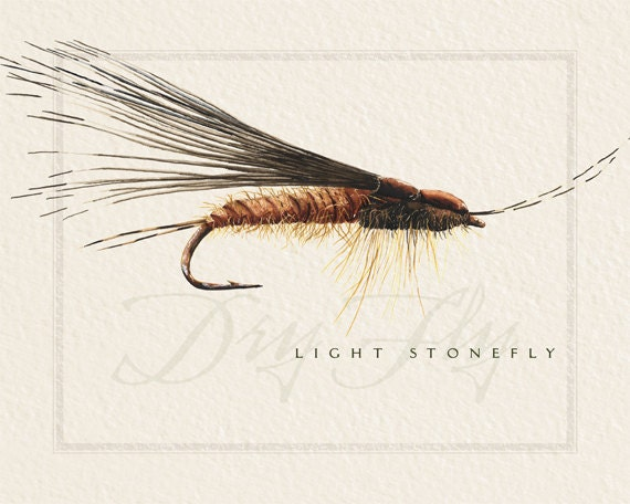 fly fishing prints, 8x10, nymph flies, dry flies, fisherman prints, fisherman birthday, fly fisherman retirement, fly fishing wall art