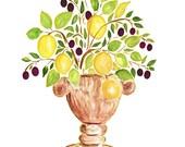 Lemon and Olives in Urn