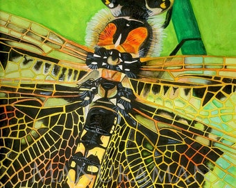 Dragonfly watercolor print by Damon Crook (11 x 14)