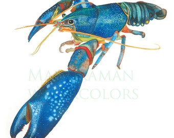 watercolor print of blue lobster by Damon Crook (for 11 x 14 inch frame)