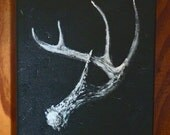 an antler profile. modern natural history painting.