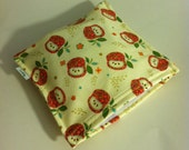 Reusable Red Delicious Apples SANDWICH bag