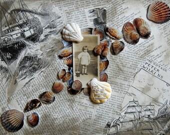 Seaside Collage Of Little Boy