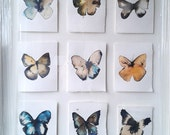 super end of year SALE multiple purchase 6 medium butterflies 27 x 17.5cm various colours