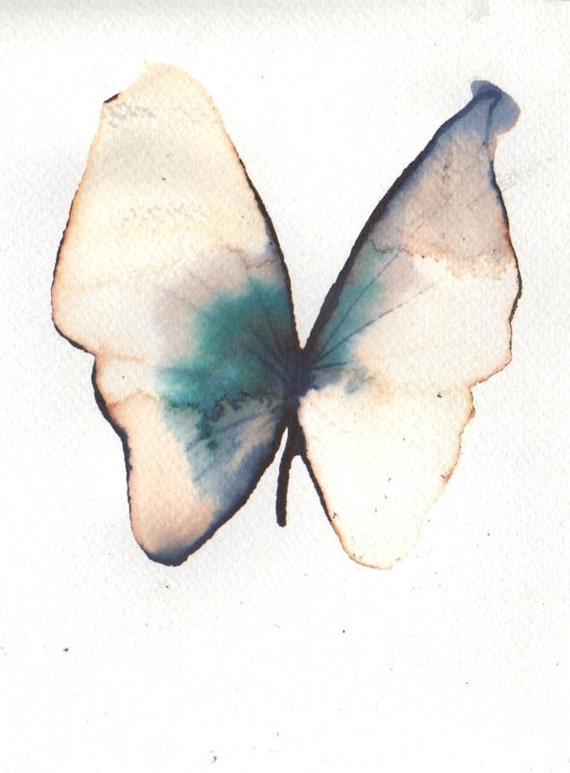 golden and turquoise blue butterfly
