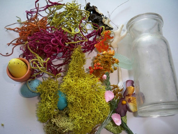 RESERVED - DIY Terrarium Kit -  Flowers, Eggs, Moss, Seaglass, and More