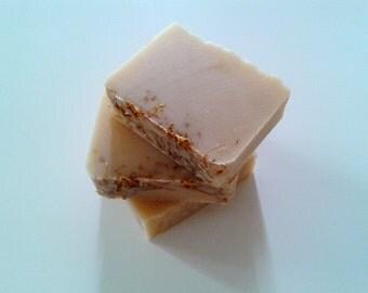 Pineapple Cilantro Coconut Milk Soap