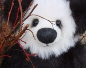 Bamboo the Panda Bear washed in on the tide- hold for M