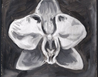orchid - original oil painting - white phalaenopsis - black and white - square