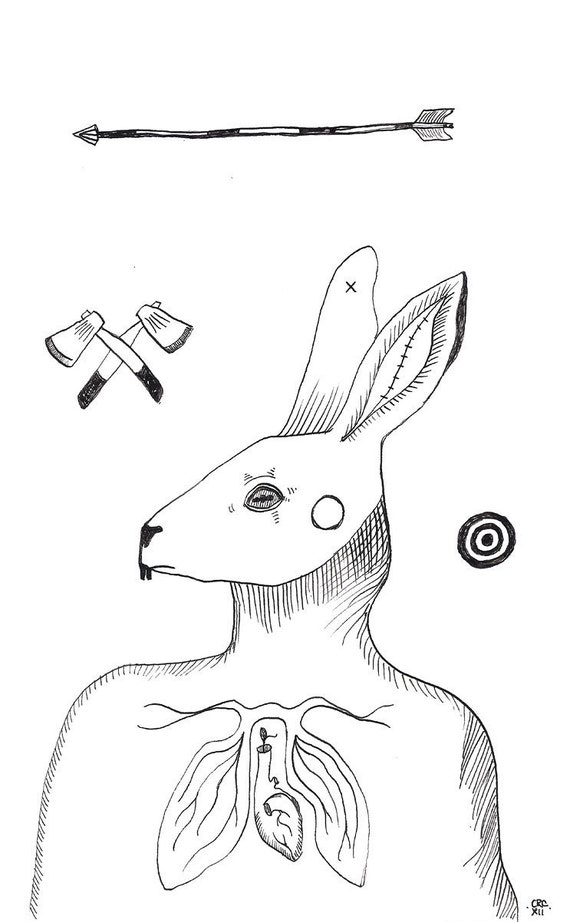 Rabbit Anatomy Coloring Book : Rabbit Anatomy Drawing