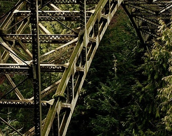 Mountain Bridge Photo, Seattle photo,  Green on green, home decor, wall decor, architectural decor, mountain decor.
