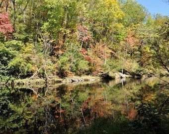Reflections of Fall..8x12 Deluxe Lustre Fine Art Print of the Tellico River in the Fall.