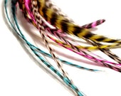 Feather Extensions 8-Rainbow Sherbert