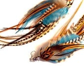 Feather Earrings Blue