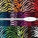 Digital Scrapbook Paper Pack  --  Rainbow Zebra Large Black -- INSTANT DOWNLOAD