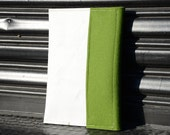 SALE Domecase: Green