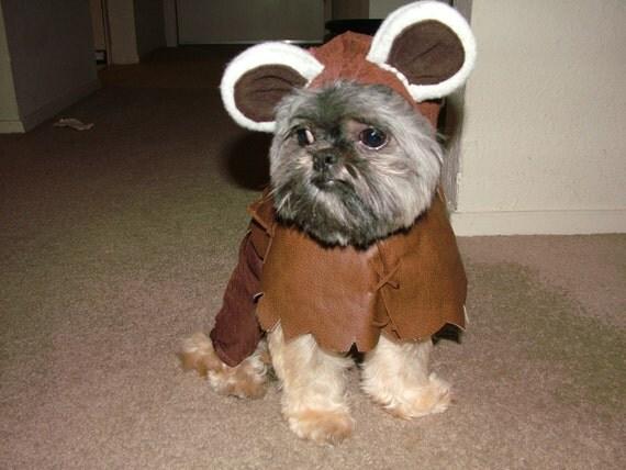 Ewok pet costume special order