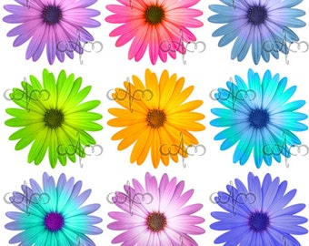 Daisy Flowers Clip Art 1 -  Graphic Design Pattern for your art projects