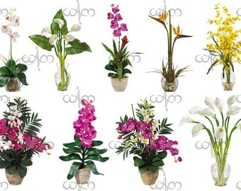 Vases of Flowers Clip Art Graphic Design Pattern for your art projects