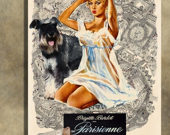 Miniature Schnauzer Vintage Movie Style Poster Canvas Print  NEW Collection by Nobility Dogs