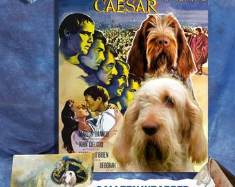 Italian Spinone Vintage Poster Canvas Print  - Julius Caesar Movie Poster by Nobility Dogs