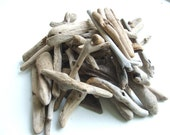 Scottish Driftwood 2 to 4 inches - 50 pieces for crafts