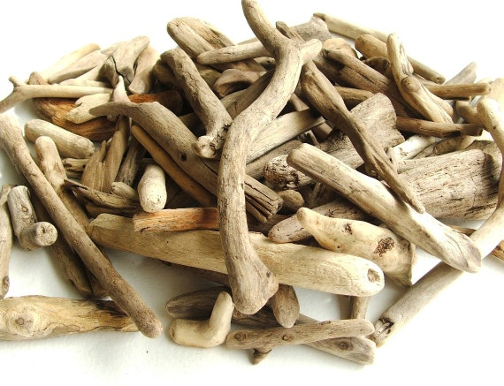 100 Plus Small Natural Scottish Driftwood Pieces. Ideal for mosaics, crafts and creations.