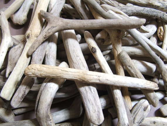 Wholesale Driftwood - 100 pieces for crafts 1 inch to 5 inches long