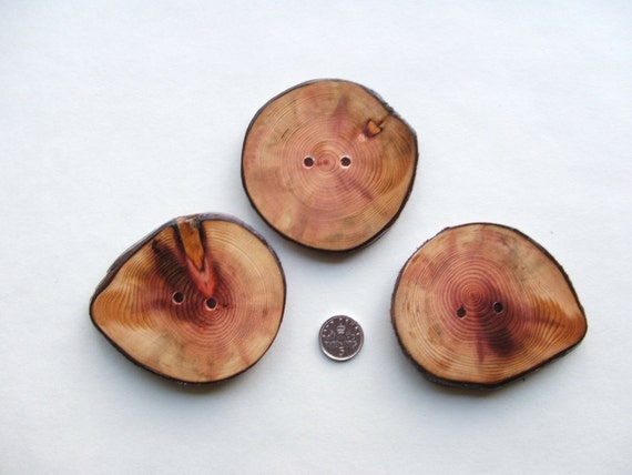 Large Handmade Rustic Focal Point Buttons Chunky Made from Redwood Slices