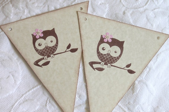 7 Piece Baby Girl Owl Pennant Banner - Baby Shower Decor