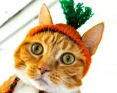 Carrot Costume for Cats - Carrot Cat Hat - READY TO SHIP