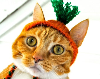 Carrot Costume for Cats - Hand Knit Cat Hat - Cat Halloween Costume