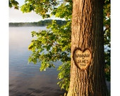 Photo personalized with your name carved into a tree LAKE LOVE TREE