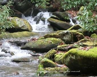 The Mossy Stream - North Carolina side of the Cherohala Skyway