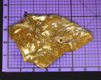 Brown Moss Agate Slab  rs0015