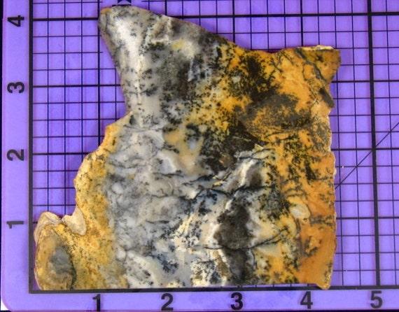 Dendritic Jasper Slab  rs0009