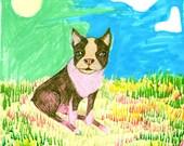 Summer Day Doggy Boston Terrier