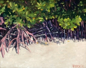 Oil Painting, Mangrove Roots, Bowditch Point, FMB