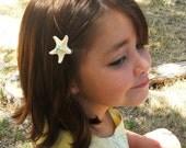 Starfish Hair Clips for Children, White Starfish or Sugar Starfish Your Choice