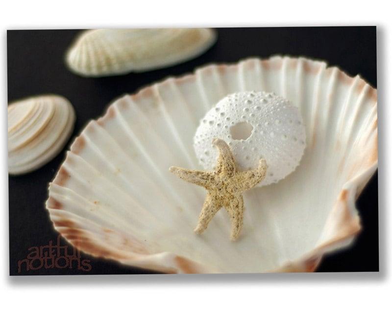 Sea shells home decor bathroom art bathroom by artfulnotions for Seashell bath accessories