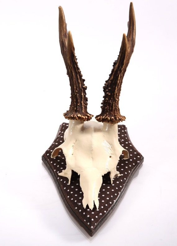 """Stylish wall sculpture, deer antler with scull, deer scull, deer mount, wall decoration, antler hook, antlers, """"Heinrich"""""""
